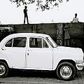 Urban Calcutta by Shaun Higson