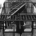 Urban Fabric - Fire Escape Stairs - 5d20592 - Black And White by Wingsdomain Art and Photography