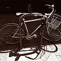 Urban Perch by Xueling Zou