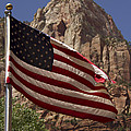 U.s. Flag In Zion National Park by Debby Richards
