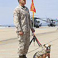 U.s. Marine And The Official Mascot by Stocktrek Images