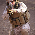 Us Marine At Work by Shoal Hollingsworth