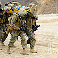 U.s. Marines Carry A Fellow Marine by Stocktrek Images