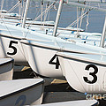 Us Navy Training Sailboats I by Clarence Holmes