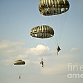 U.s. Soldiers Descend Through The Sky by Stocktrek Images