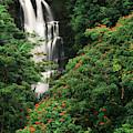 Usa, Hawaii Islands, View Of Nanue by Stuart Westmorland