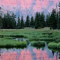 Usa, Utah, High Uintas Wilderness by Scott T. Smith