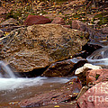 Utah Creek Cascades by Bob Phillips