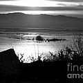 Utah Lake Dusk 03 - Bw by Linda Koelbel