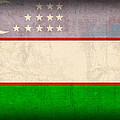 Uzbekistan Flag Vintage Distressed Finish by Design Turnpike