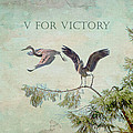V For Victory by Peggy Collins