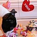 Valentine Be Mine by Susan Herber