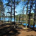 Valentine Lake 1 by Ricardo J Ruiz de Porras