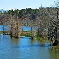 Valentine Lake 4 by Ricardo J Ruiz de Porras