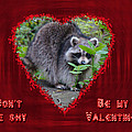 Valentine's Day Greeting Card - Raccoon by Mother Nature
