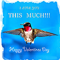 Valentines Day I Love You This Much by Randall Branham