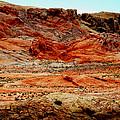 Valley Of Fire High Desert by Frank Wilson