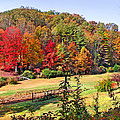 Valley Farm In The Fall by Duane McCullough