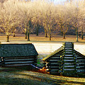 Valley Forge Cabins by Bill Cannon