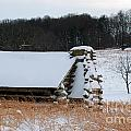 Valley Forge Winter 10 by Terri Winkler
