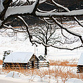 Valley Forge Winter 14 by Terri Winkler