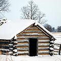 Valley Forge Winter 3 by Terri Winkler