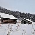 Valley Forge Winter 7 by Terri Winkler