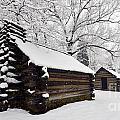 Valley Forge Winter 9887 by Terri Winkler