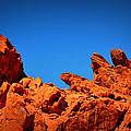 Valley Of Fire Nevada Desert Rock Lizards by Katy Hawk