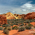 Valley Of Fire by Robert Bales