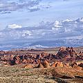 Valley Of Fire Vista by Debby Richards