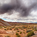 Valley Of Fire With Dramatic Sky by Jane Rix