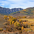 Valley Of Gold by Jim Garrison