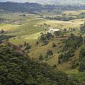 Valley View Of  Atherton Tableland by Carol Ailles