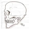 Vampire Skull by Jeffrey Oleniacz