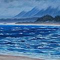 Vancouver Coast by Cheryl Fecht