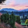 Vancouver Island Evening by Georgianne Giese