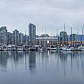Vancouver Panorama by Genaro Rojas
