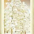 Vanilla Icing by Ellen Cannon