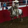Vaquero Number 2 Rodeo Chandler Arizona 2002 by David Lee Guss