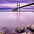Vasco Da Gama Bridge by Jorge Maia