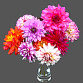 Vase Of Bright Dahlia Flowers Posterized by Rosemary Calvert