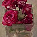 Vase Of Roses by Jean-Pierre Ducondi