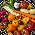 Vegetable Basket    by Garry Gay