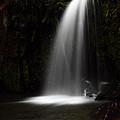 Veil Of Light by Simone Byrne Photography