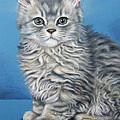 Velvet Kitten by Nicole Zeug