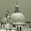 Venetian Basilica Salute by Julie Palencia