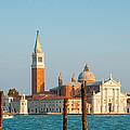 Venetian Dove by Gurgen Bakhshetsyan
