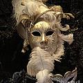 Venetian Face Mask B by Heiko Koehrer-Wagner