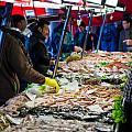 Venetian Fish Mongers by Jeff Kershaw